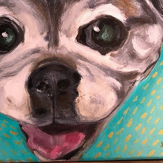 Animal Portraits Commisions