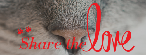 Wolf Moon Animal Sitting - Share the Love Campaign