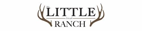 Little Ranch Logo Option #3