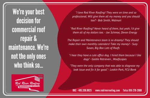 Commercial Division Reviews Postcard Mailer
