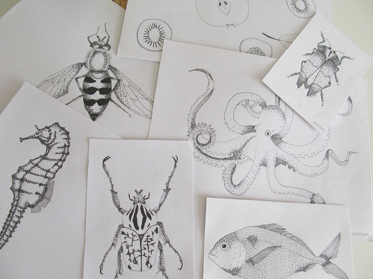 Illustrations by hand