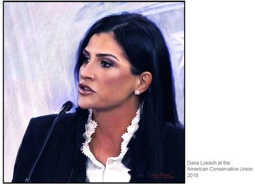 Dana Loesch, NRA