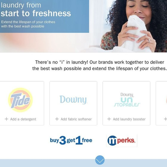 Meijer Laundry (Website)