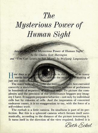 The Mysterious Power of Sight