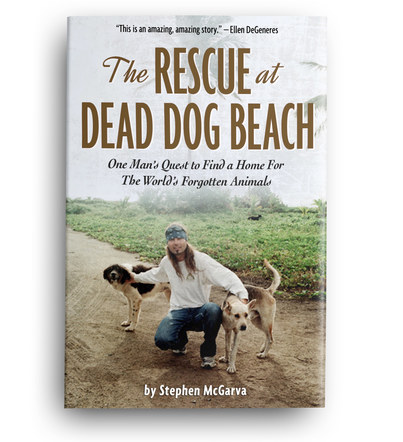 The Rescue at Dead Dog Beach | Front Cover Design 2